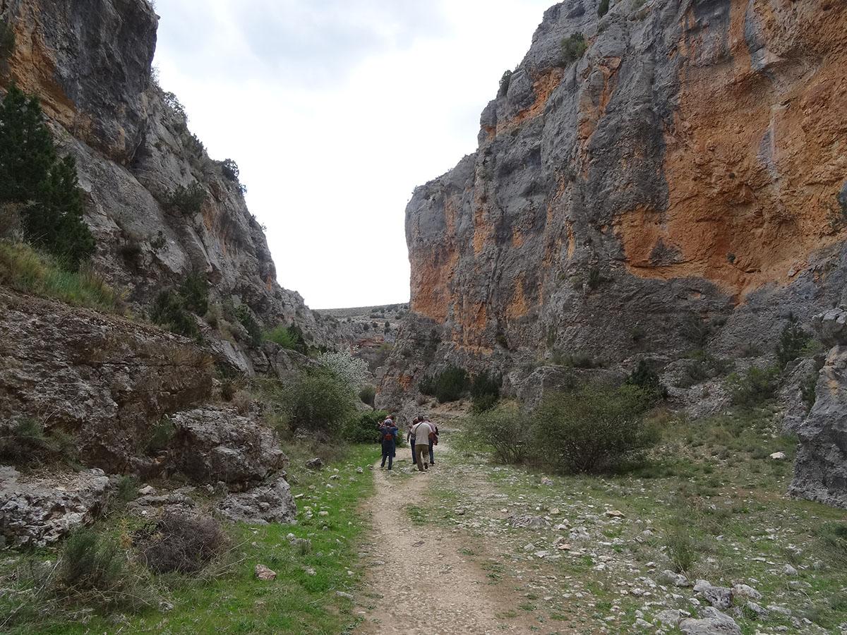 Excursiones y visitas calatayud hoces rio mesa3