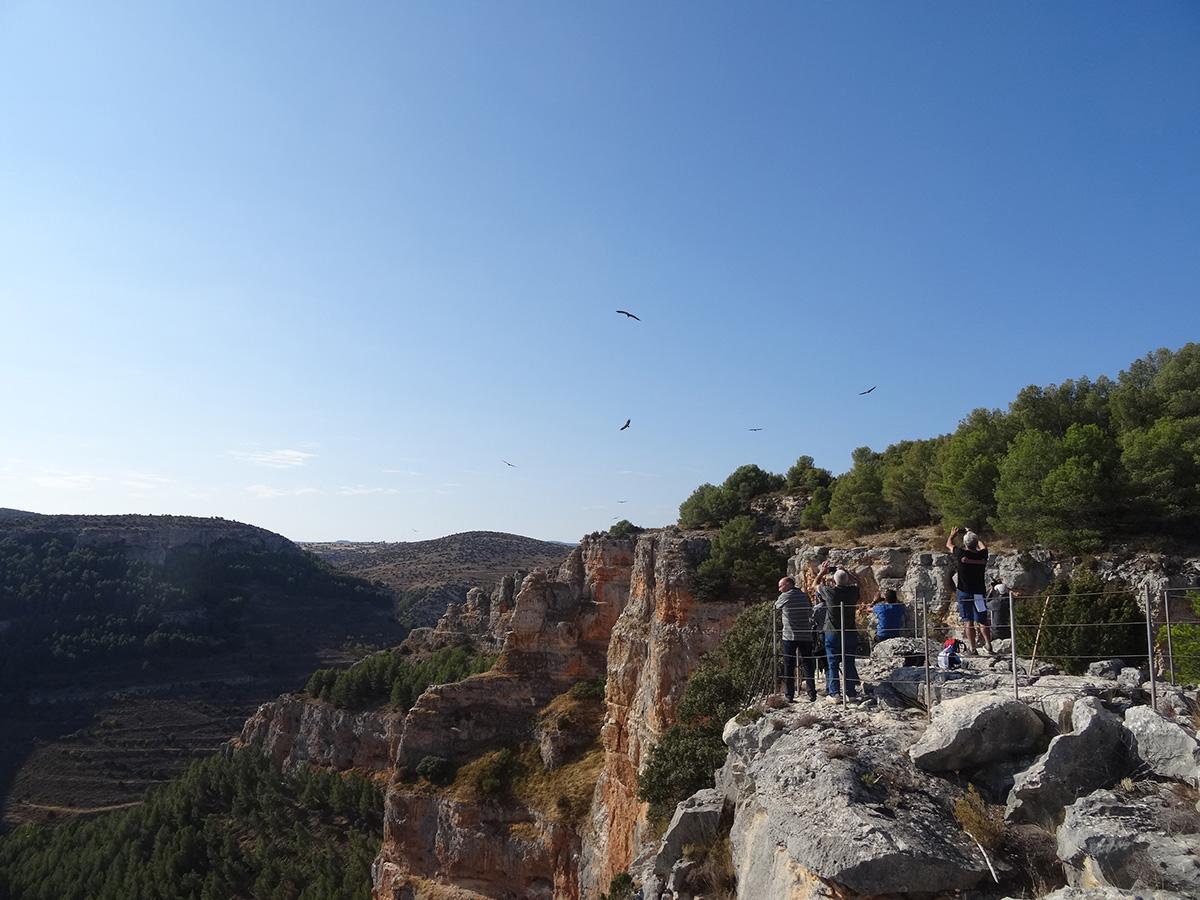 Excursiones y visitas calatayud hoces rio mesa6