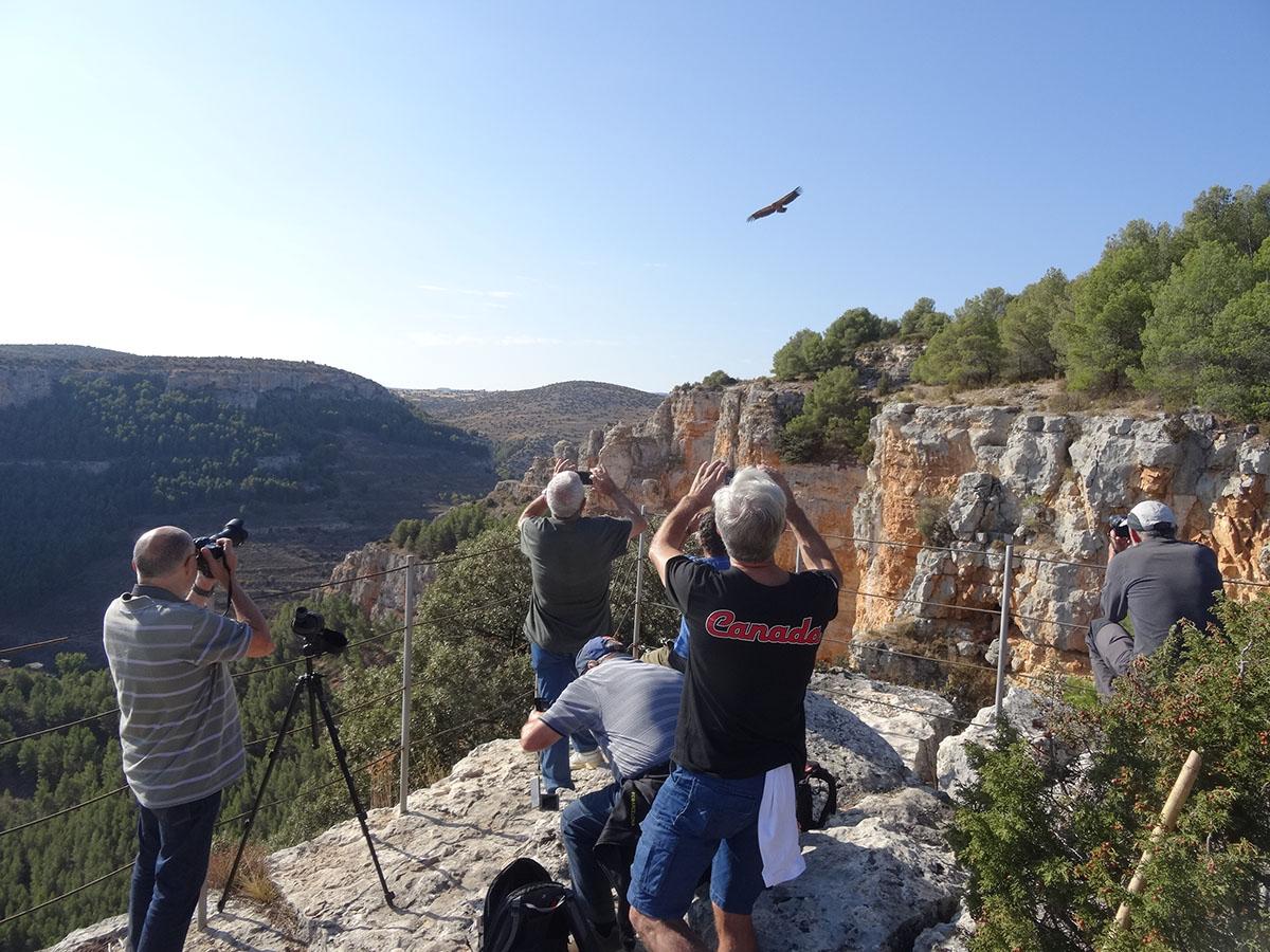Excursiones y visitas calatayud hoces rio mesa7