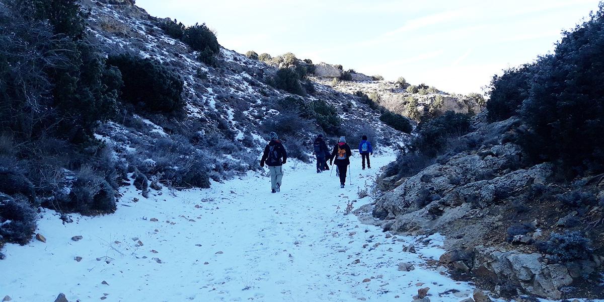 Excursiones y visitas calatayud valle rio piedra6